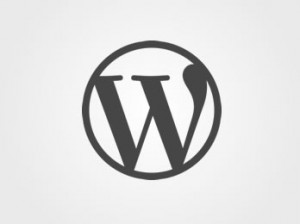 WordPress: Style admin screen – /wp-admin